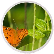 Round Beach Towel featuring the photograph Gulf Fritillary by Jane Luxton