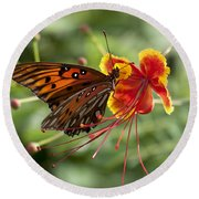 Round Beach Towel featuring the photograph Gulf Fritillary Photo by Meg Rousher