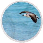 Gull At Lido Beach IIi Round Beach Towel