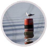 Gull Round Beach Towel by Spikey Mouse Photography
