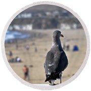 Gull Watching Beach Visitors Round Beach Towel by Susan Wiedmann