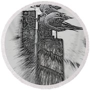 Round Beach Towel featuring the photograph Gulls In Pencil Effect by Linsey Williams