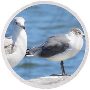 Gulls Of Florida II Round Beach Towel