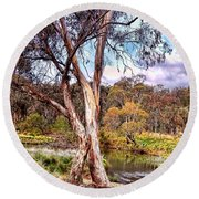 Round Beach Towel featuring the photograph Gum Tree By The River by Wallaroo Images