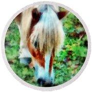 Haflinger Pony Graze  Round Beach Towel