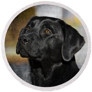 Round Beach Towel featuring the photograph Handsome Black Lab by Eleanor Abramson