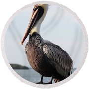Handsome Brown Pelican Round Beach Towel