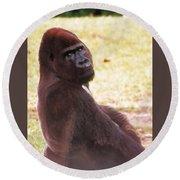 Handsome Gorilla Round Beach Towel by Belinda Lee