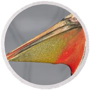 Round Beach Towel featuring the photograph Handsome In Red by Bryan Keil