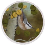 Hanging Around-red Breasted Nuthatch Round Beach Towel