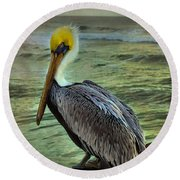 Round Beach Towel featuring the photograph Hanging Around by Steven Reed