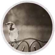 Hanging Out In The Garden Round Beach Towel by Kim Henderson