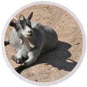 Happy Goat Round Beach Towel