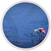 Happy Spoonbill Round Beach Towel
