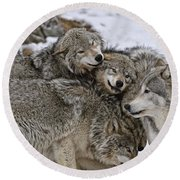 Happy Wolf Pack Round Beach Towel