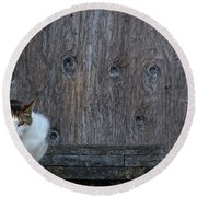 Round Beach Towel featuring the photograph Harlequin Rustic by Chriss Pagani