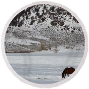 Round Beach Towel featuring the photograph Harmony by Fiona Kennard