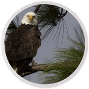 Harriet The Bald Eagle Round Beach Towel