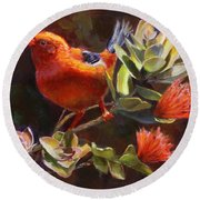 Hawaiian IIwi Bird And Ohia Lehua Flower Round Beach Towel