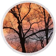 Hawk At Sunrise Round Beach Towel