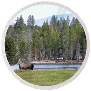 Hayden Valley Bison Round Beach Towel