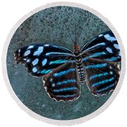 Hdr Butterfly Round Beach Towel by Elaine Malott