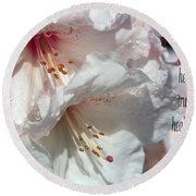 Round Beach Towel featuring the photograph Healing Power by Jean OKeeffe Macro Abundance Art