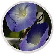 Heavenly Blue Morning Glory Round Beach Towel