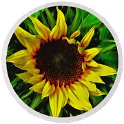 Helianthus Annus - Sunnydays Round Beach Towel