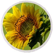 Hello Sunshine Round Beach Towel by Nava Thompson