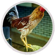Hen On The Wall Round Beach Towel