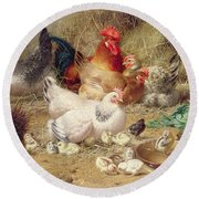 Hens Roosting With Their Chickens Round Beach Towel by Eugene Remy Maes