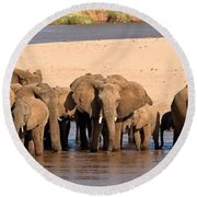 Herd Of African Elephants At A River Round Beach Towel