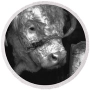 Hereford Bull In Black And White Round Beach Towel by Cathy Anderson