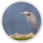 Heron And Pond Round Beach Towel