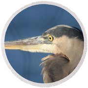 Round Beach Towel featuring the photograph Heron Close-up by Christiane Schulze Art And Photography