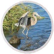 Heron Dance Round Beach Towel by Karen Silvestri