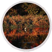 Heron Hideaway Round Beach Towel by Elizabeth Winter