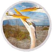 Herons Round Beach Towel