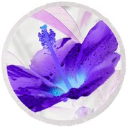 Hibiscus - After The Rain - Photopower 754 Round Beach Towel by Pamela Critchlow