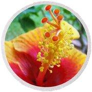 Hibiscus Antennae Round Beach Towel