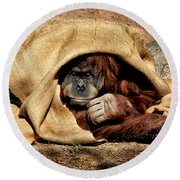 Hiding In Plain Sight Round Beach Towel