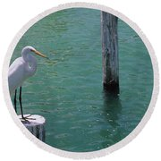 High Angle View Of A Great Egret Ardea Round Beach Towel