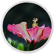 High Speed Hibiscus Flower Round Beach Towel