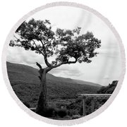 Hildene Tree 5689 Round Beach Towel