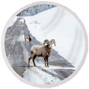 On The Road Again Big Horn Sheep  Round Beach Towel