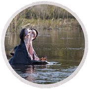 Round Beach Towel featuring the photograph Hippo Yawning by Liz Leyden