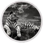 Round Beach Towel featuring the photograph His Majesty by Adam Olsen
