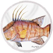 Hog Fish Round Beach Towel by Carey Chen