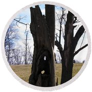 Round Beach Towel featuring the photograph Holey Tree Trunk by Nick Kirby